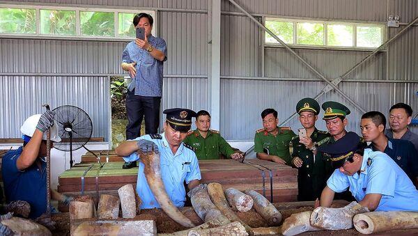 Vietnam-vahşi hayvan ticareti-fildişi - Sputnik Türkiye