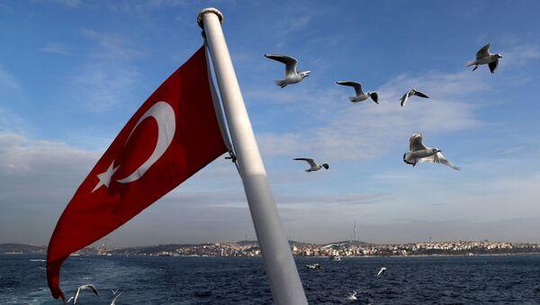 Türkiye - İstanbul - Vapur - Sputnik Türkiye