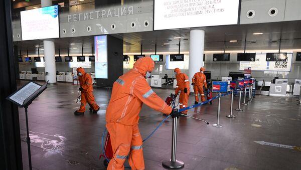 Platov Havaalanı - Sputnik Türkiye