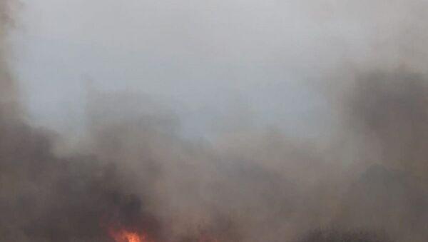 Bulgaristan sınırında çıkan orman yangını 2 gündür söndürülemezken, alevlerin Türkiye'ye sıçramasına 5 metre kaldı. - Sputnik Türkiye