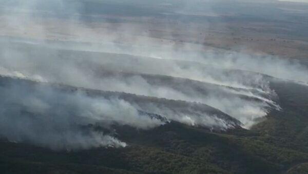 Bulgaristan-Türkiye sınırındaki yangın kontrol altına alındı - Sputnik Türkiye