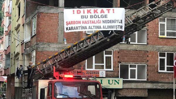 Trabzon, şarbon, karantina - Sputnik Türkiye