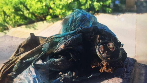 Eskişehir'de Porsuk Çayı'nda balık tutan bir kişinin oltasına el bombası takıldı. Olay yerine gelen polis ekipleri, poşet içindeki el bombasını kontrol ederek muhafaza altına aldı. - Sputnik Türkiye
