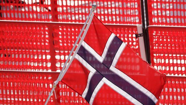 Norveç bayrak - Sputnik Türkiye