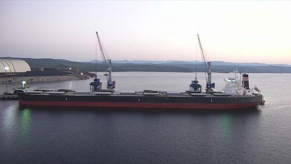 Çanakkale'de, Panama bandıralı bir gemiye gizlenmiş 25 kilogram kokain ele geçiren ekipler, 7 zanlıyı gözaltına aldı. - Sputnik Türkiye