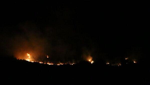 Adana'nın Kozan ilçesindeki ormanlık alanda çıkan yangına müdahale ediliyor - Sputnik Türkiye
