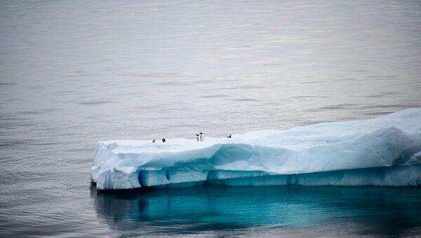 Antarktika, buzul, buzulların erimesi - Sputnik Türkiye
