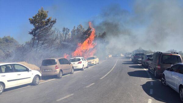 İzmir'in Seferihisar ilçesindeki otluk alanda çıkan yangın, bir anda o sırada plajda bulunan vatandaşların park halindeki araçlarına sıçradı. - Sputnik Türkiye