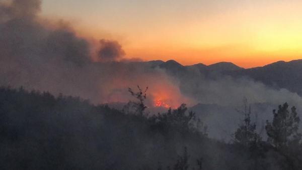 Adana Kozan'daki orman yangını - Sputnik Türkiye