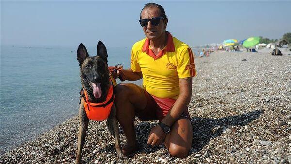 Cankurtaran köpeği Fox - Sputnik Türkiye