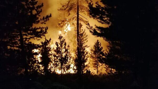 Bolu'nun Seben ilçesi Karca Kabak Yaylası mevkiinde ormanlık alanda yangın çıktı - Sputnik Türkiye