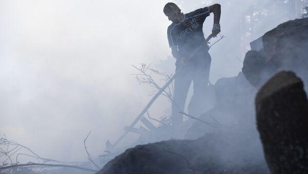 Artvin, orman yangını - Sputnik Türkiye