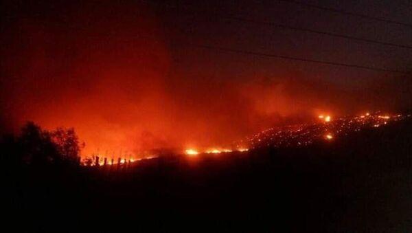 Suriye'de Lazkiye kentinin doğusunda çıkan yangın Hama kırsalına doğru yayılmayı sürdürüyor.  - Sputnik Türkiye