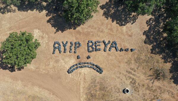Piknik alanında 150 torba çöp toplayan Lüleburgaz Belediyesi: Ayıp beya - Sputnik Türkiye