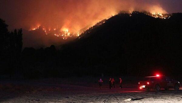 Adana orman yangını - Sputnik Türkiye