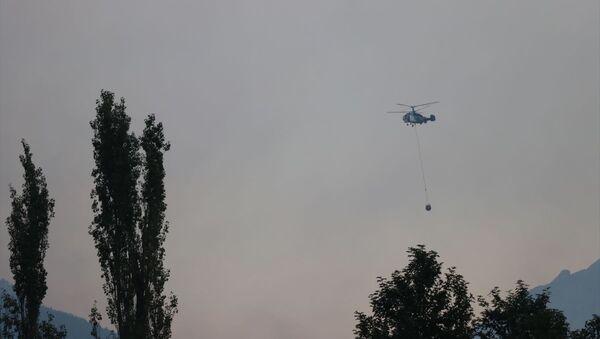 Adana'daki orman yangınına havadan müdahale tekrar başladı - Sputnik Türkiye