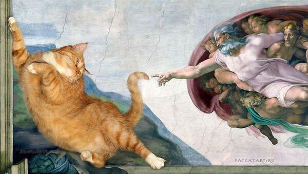 Fat Cat Art Projesi  - Sputnik Türkiye
