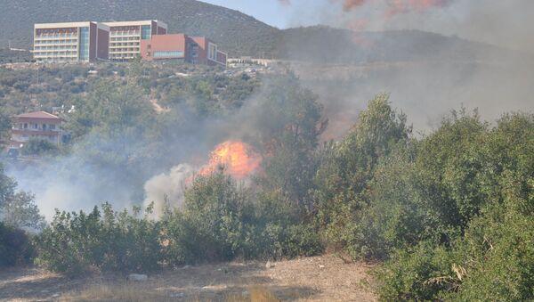 Muğla'nın Milas ilçesinde ormanlık arazide bugün aynı noktada 6 kez yangın çıktı. - Sputnik Türkiye