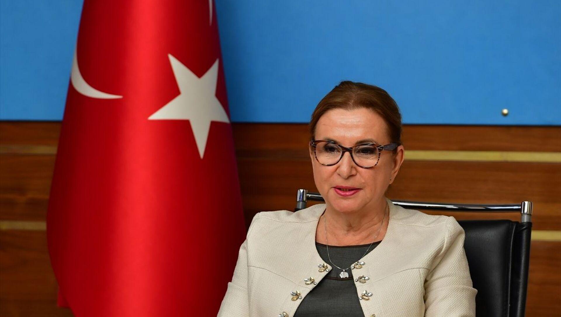 Ticaret Bakanı Ruhsar Pekcan - Sputnik Türkiye, 1920, 19.02.2021