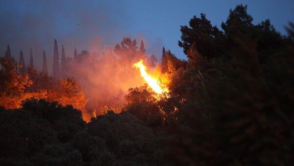 Aydın'ın Söke ilçesindeki zeytinlik ve ormanlık alanda başlayan yangını söndürme çalışmaları devam ediyor. - Sputnik Türkiye