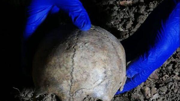 Samsun'da yol çalışmasında bulunan kafatası - Sputnik Türkiye