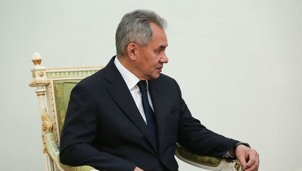 Sergey Şoygu, Ermenistan - Sputnik Türkiye