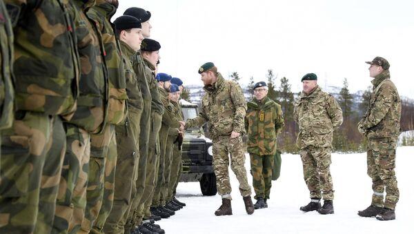 Norveç, ordu, asker - Sputnik Türkiye