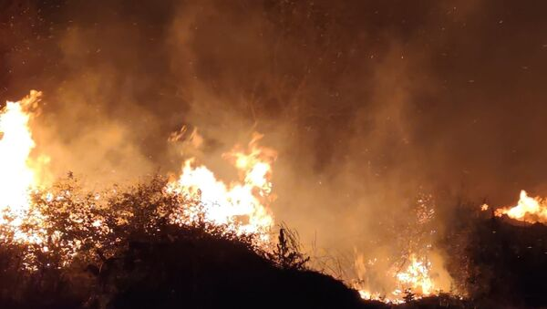 Bursa'da, İznik Gölü kıyısındaki sazlık alanda çıkan yangın kontrol altına alındı. - Sputnik Türkiye