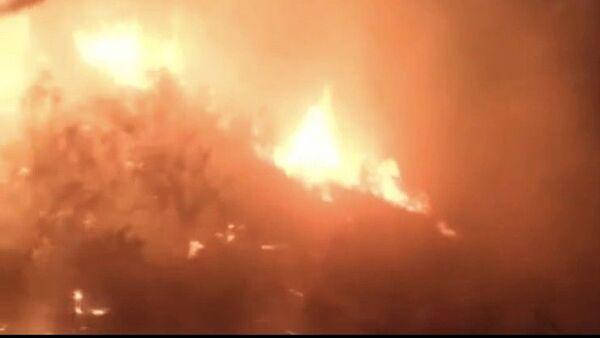 Hatay'ın Samandağ ilçesinde zeytinlik alanda çıkan yangın, ekiplerince 5 saatlik müdahalesinin ardından kontrol altına alındı. - Sputnik Türkiye
