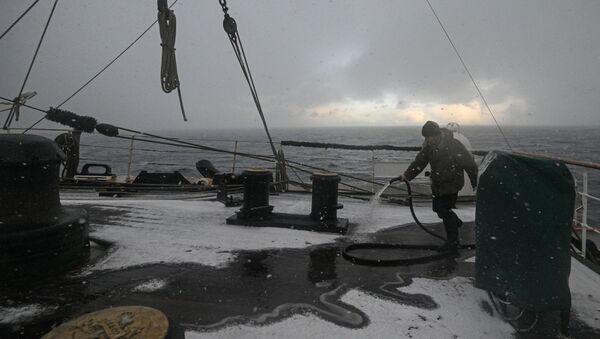 Barentz Denizi - balıkçı - Sputnik Türkiye