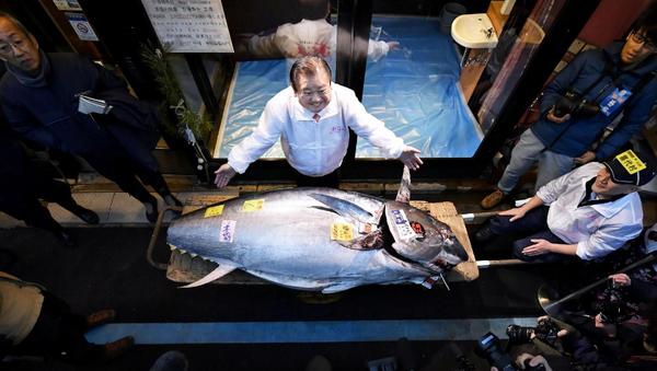Mavi yüzgeçli orkinos balığı - Sputnik Türkiye
