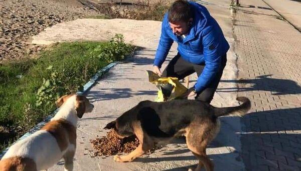 Zonguldak'ın Çaycuma ilçesinde veteriner olan Doğuş Özdil hayvanseverlere yardım çağrısında bulundu. - Sputnik Türkiye