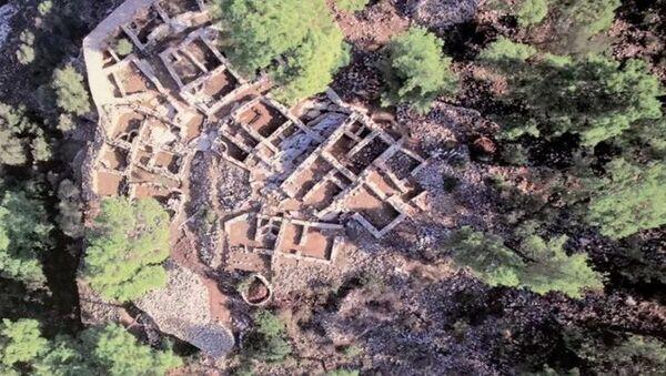 3500 yıllık Pedasa Antik Kenti'ni talan ettiler - Sputnik Türkiye