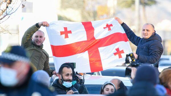 Gürcistan - protesto - Sputnik Türkiye