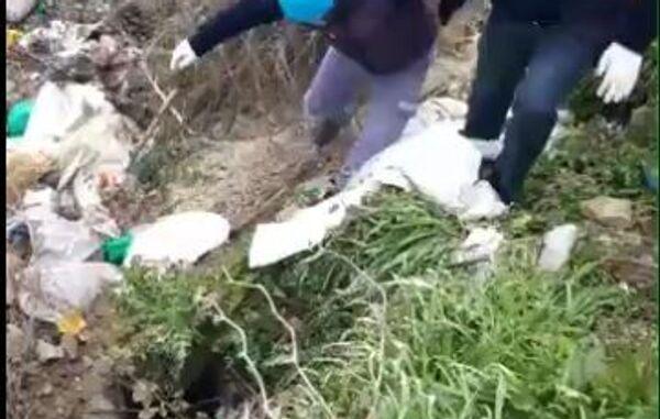 Tekirdağ'ın Malkara ilçesinde yol kenarında çuval içinde ölü bulunan köpeğin, ayaklarından bağlandığı ve eziyete maruz kaldığı ortaya çıktı. - Sputnik Türkiye