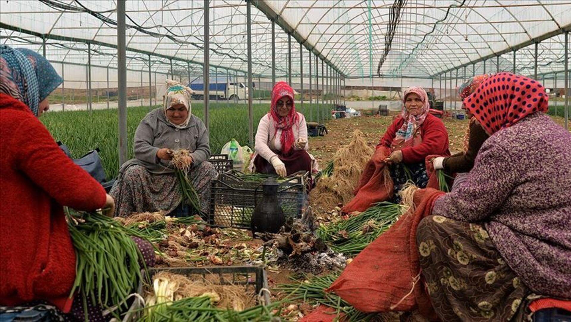 Kadın çiftçi - Sputnik Türkiye, 1920, 08.03.2021