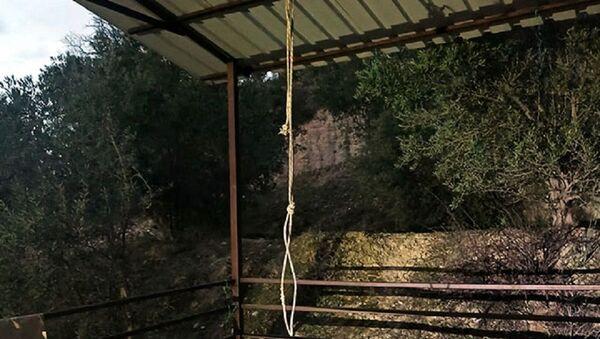 Antalya'da salıncak ipi boğazına dolanan çocuk öldü - Sputnik Türkiye