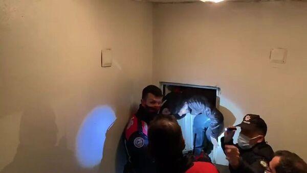 Kumar baskınında saklandıkları merdiven dairesindeki boşlukta yakalandılar - Sputnik Türkiye