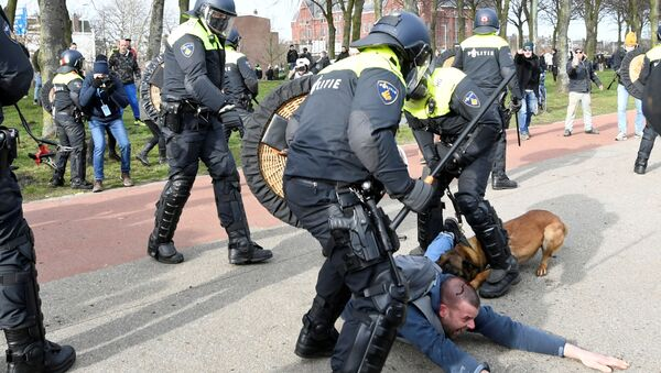 Hollanda protesto - Sputnik Türkiye