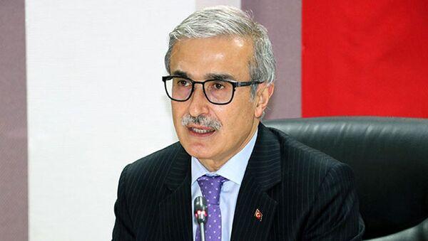 Savunma Sanayii Başkanı İsmail Demir - Sputnik Türkiye