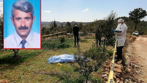 Zeytin ağaçlarını kestiği gerekçesiyle tartıştığı ağabeyini öldürdü - Sputnik Türkiye