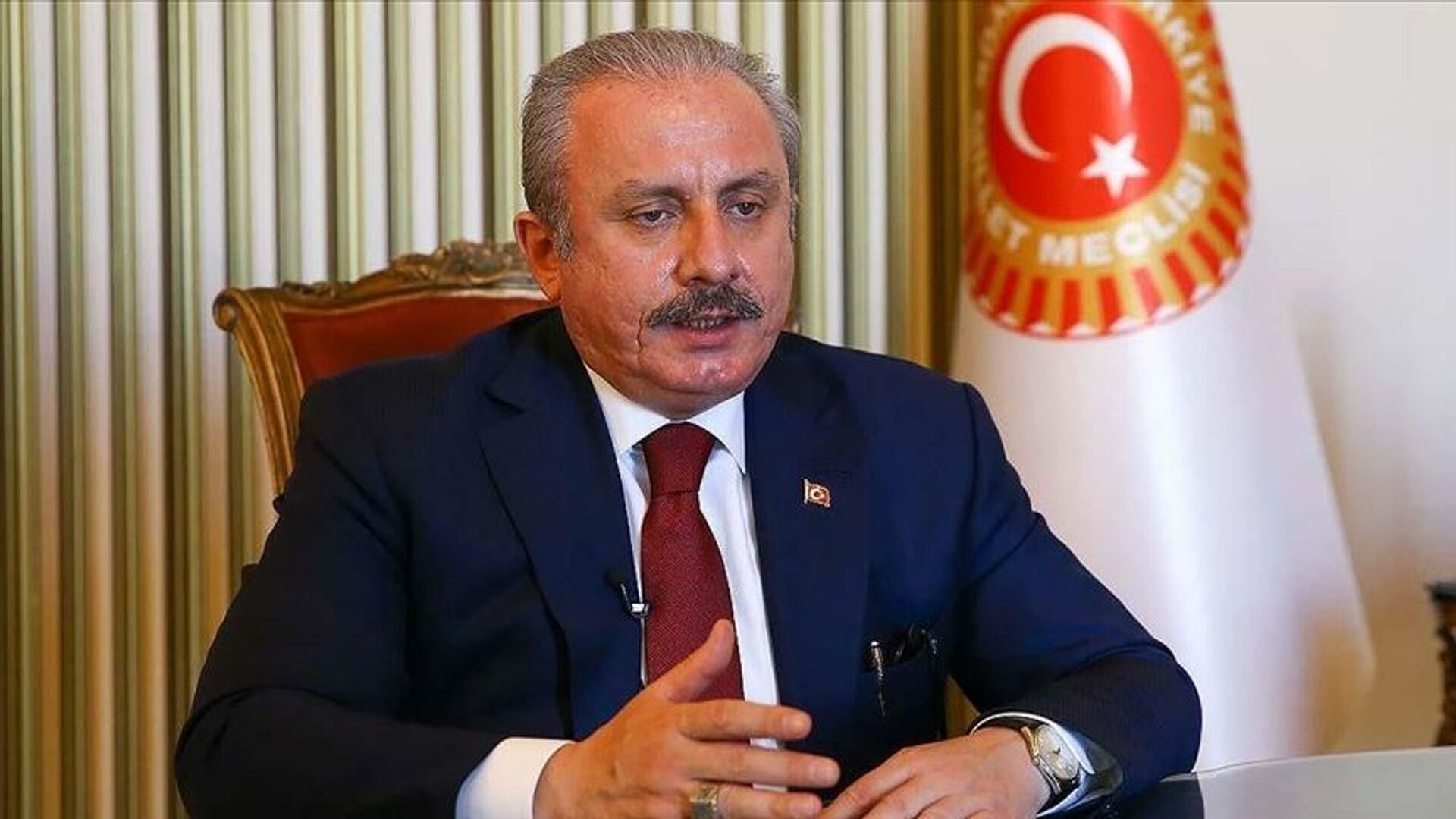 Mustafa Şentop - Sputnik Türkiye, 1920, 22.03.2021