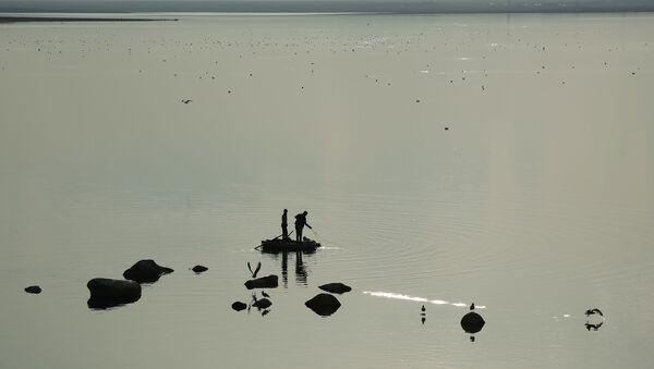 Diyarbakır'da, balıkçı ve martıların balık avından tabloluk görüntüler - Sputnik Türkiye