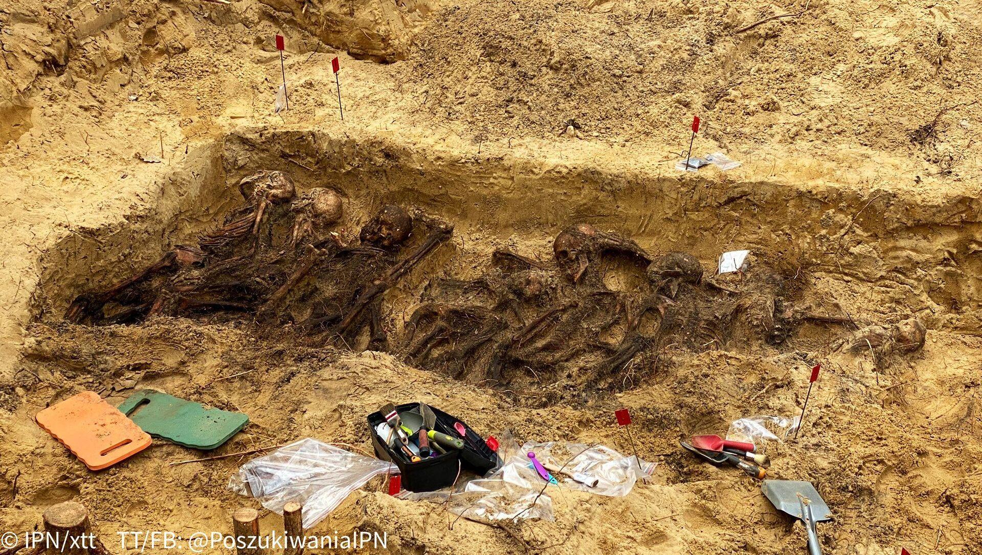 Polonya'da 2. Dünya Savaşı sırasında Naziler tarafından öldürülen 29 kişinin iskeleti bulundu  - Sputnik Türkiye, 1920, 26.03.2021