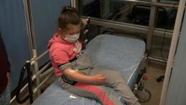 Kırıkkale'de başıboş gezen pitbull 8 yaşındaki çocuğa saldırdı - Sputnik Türkiye
