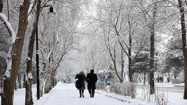 Doğu Anadolu, Erzurum, kar yağışı - Sputnik Türkiye