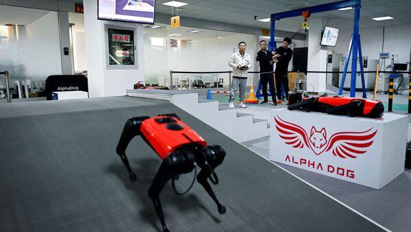 Çin merkezli robot firmasından yeni 'robot köpek'  - Sputnik Türkiye