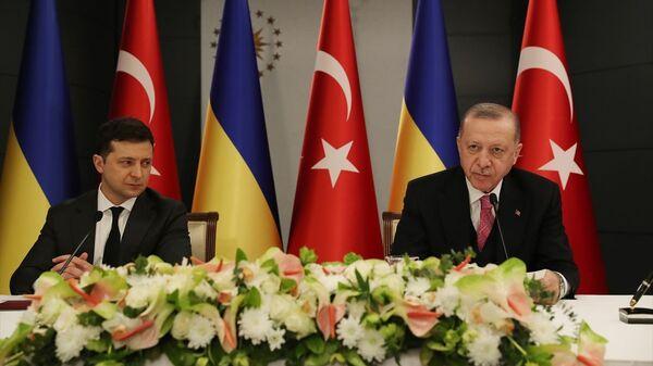 Erdoğan - Zelenskiy - Sputnik Türkiye
