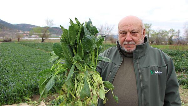 Amasya'da yaşayan çiftçi Mehmet Gülsoy - Sputnik Türkiye
