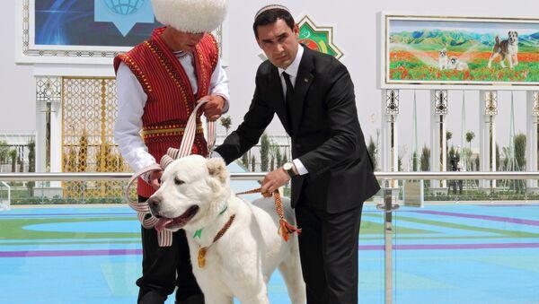 Aynı zamanda Türkmenistan Devlet Başkanı Gurbanguli Berdimuhammedov'un oğlu olan Başbakan SerdarBerdimuhammedov, Alabay Ulusal Günü'nde güzellik yarışmasını kazanan köpeğe madalya takarken - Sputnik Türkiye
